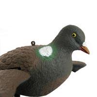 ماکت شکار کبوتر 2