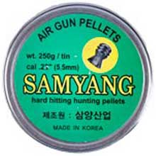 ساميانگ سرگنبدی