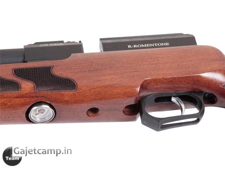 تفنگ پی سی پی رومنتون اف 310
