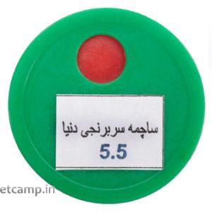 ساچمه دنیا سر برنجی کالیبر 5.5